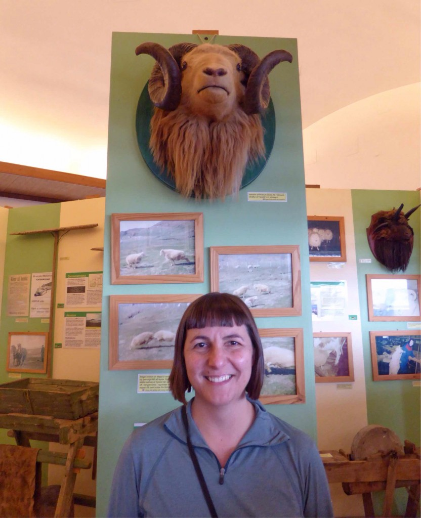 San-Marié at the start of a delightful 2 hours at the Museum of Icelandic Sheep Farming.